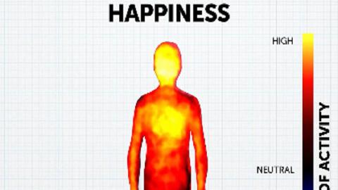 Így hatnak érzelmeink a testünkre!