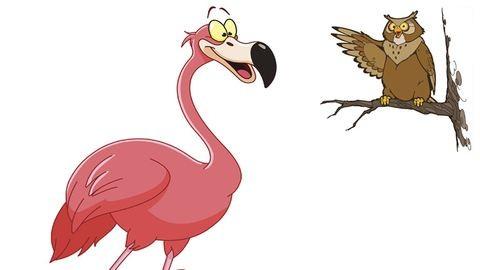 A flamingó az új bagoly!