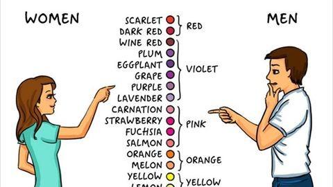 Mókás rajzokon a férfiak és nők közti különbségek