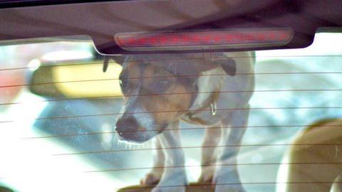 Ha életet menthetsz, törd be az autó ablakát