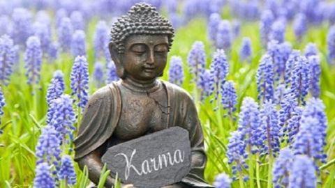 A karma 5 törvénye