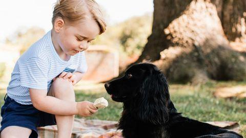 Friss képek a születésnapos György hercegről – megzabálod, olyan édes