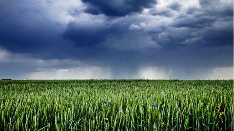 33 fokos melegben szakadni fog az eső – ez vár ránk a következő 3 napon