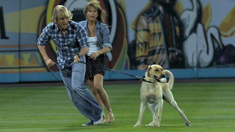 Figyelem, akár 90 ezerre is bírságolhatják a feledékeny kutyatartókat!