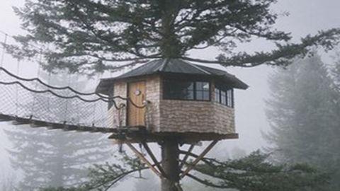 Mindenki gyerekkori álmát valóra váltotta a férfi, aki egy faházban él