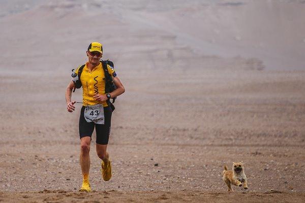 Profi futó fogadta be a kóborkutyát - most együtt falják a kilométereket