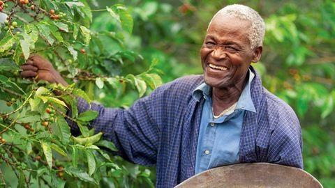 Tudta, hogy egy csésze kávéval is tehet a fenntarthatóságért?