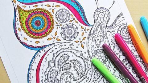 Bámulatos rajzok – 10 felnőtt kifestő
