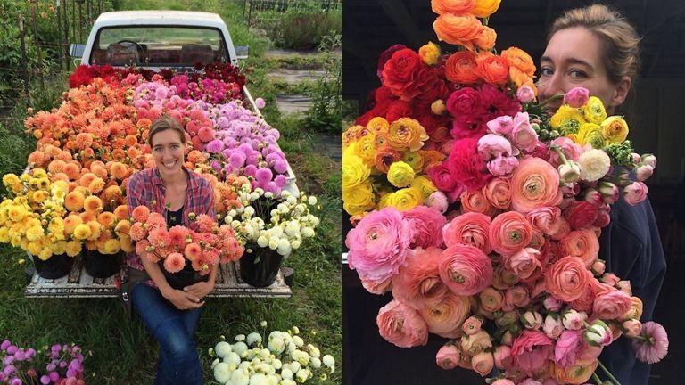Ilyen életről álmodtál egész életedben – csodás képek egy virágkötő Instagramjáról