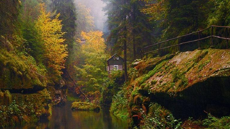Varázslatos erdei házikók, amikben magad mögött hagyhatod a világ zaját