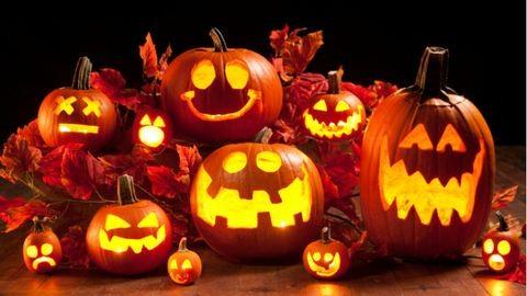 Milyen a jó halloweeni tök?