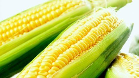 Durva büntetés jár kukoricalopásért
