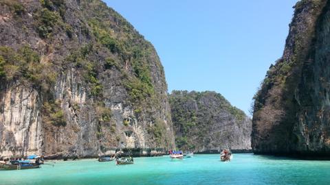 Mérgező állatok lepték el a thaiföldi strandokat