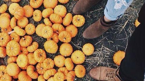 A csillagjegyed megmondja, hová kirándulj idén ősszel