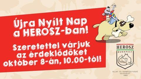 Nyílt Nap a HEROSZ Budapesti Állatotthonban (x)