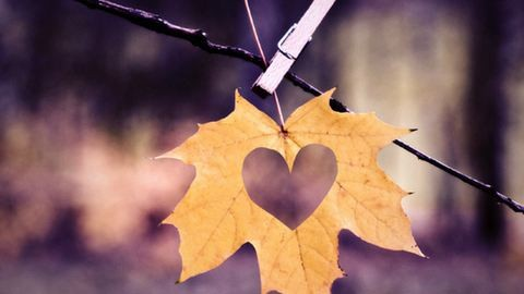 Szerelmes üzenetet posztolt Lázár Bence