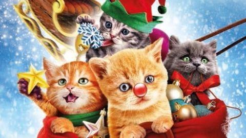 Szuper karácsonyi mese – erről szól a Cirmos karácsony