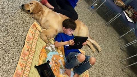 Első látásra beleszeretett négylábú segítőjébe az autista kisfiú