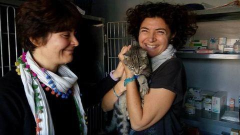 Két hónapig várt egy cica az olasz földrengés romjai alatt