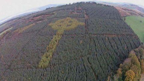 Rejtélyes kelta kereszt tűnt fel az ír erdőkben