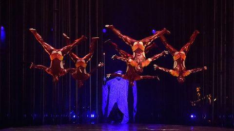 Cirque du Soleil - Varekai...