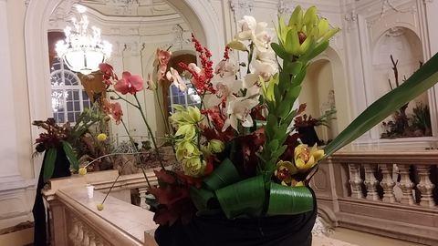 Ma kezdődik az orchideakiállítás