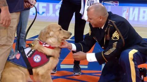 Megható: földre borulva ölelte várva várt kutyáját a veterán