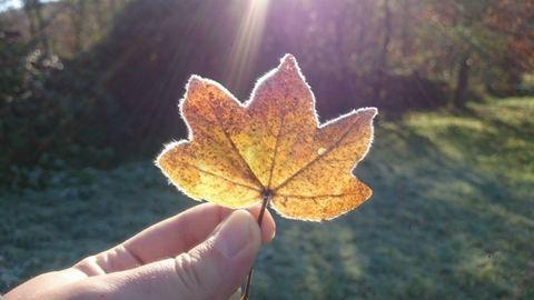 Így lesz az őszből tél! – gyönyörű fotók