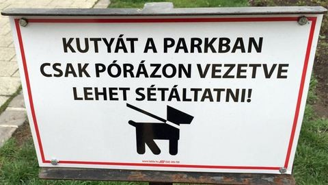 Teljesen átvariálják a Városligetet – Kutyások, figyelem!
