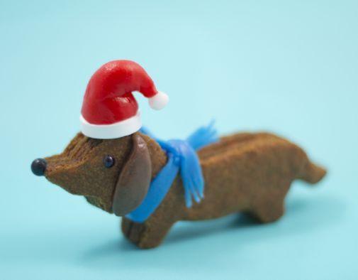 Ezt kell megsütnie minden tacskómániásnak idén karácsonykor