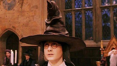 A Harry Potter Teszlek Süvegére hasonlító pókot találtak – fotó