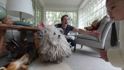 Mark Zuckerberg a lányát videózta, a kutya beletrollkodott