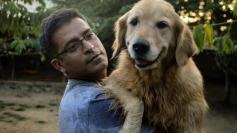 735 kutyáról gondoskodik az indiai üzletember
