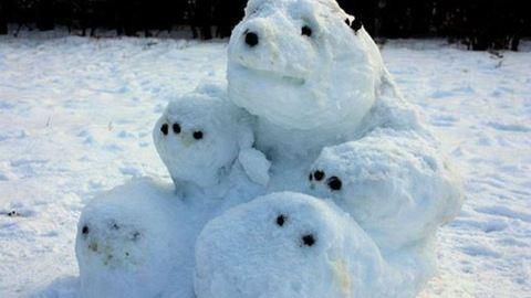 A jegesmedvétől Yodáig: bemutatjuk a világ legkreatívabb hóembereit