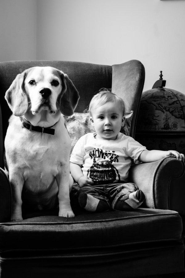 Egy baba és egy kutya két éve tartó barátsága képekben