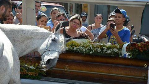 Sírva búcsúzott halott gazdájától egy ló