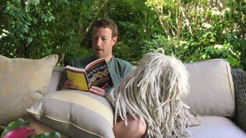 Mark Zuckerberg magyar kutyája menő kis szobrot kapott