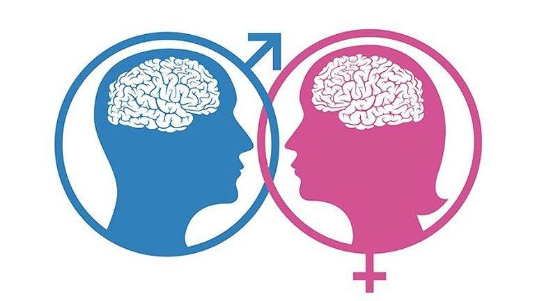 Fontos dolog derült ki a férfi és a nő agyáról