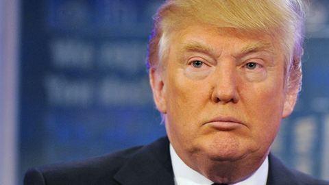 Molylepkét neveztek el Donald Trumpról