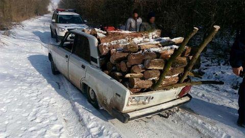 Ezzel a szörnnyel szállítják az ellopott fát – fotó