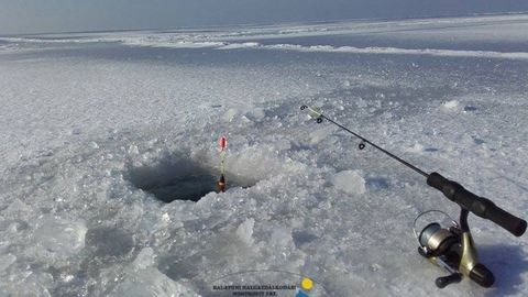 Gigahalat pecáztak ki a Balaton jege alól