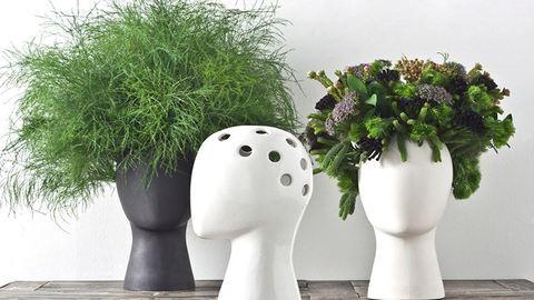 Burjánzó frizurákká változnak a virágok ezekben a vázákban