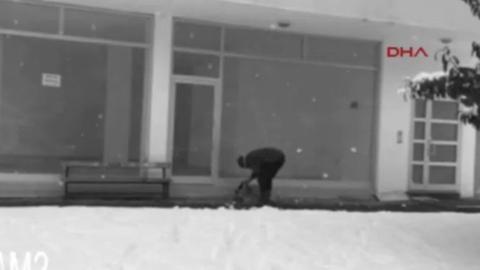 Kitüntették a férfit, aki ráadta kabátját egy didergő kóbor kutyára