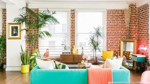 Ez a szobanövény minden mérget kiszűr a lakásból