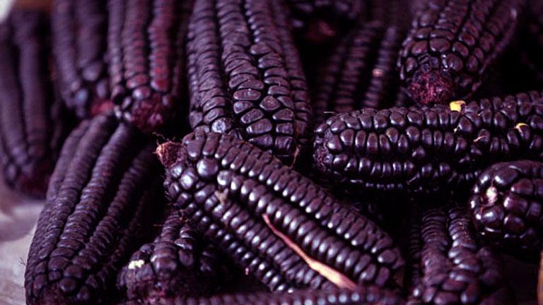 Nem könnyű lila kukoricához hozzájutni, de érdemes megpróbálni! (Fotó: Tumblr)