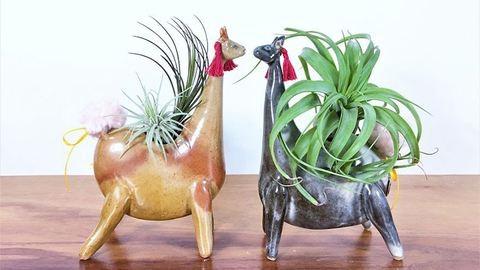 Az állatbarátok imádni fogják ezeket a cuki vázákat!