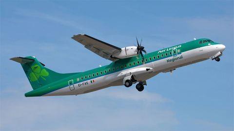 A világ legcukibb mentőakciója zajlik egy ír reptéren