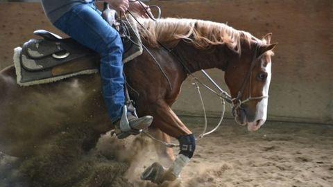 Nézőkre rontott a dróntól megriadt ló