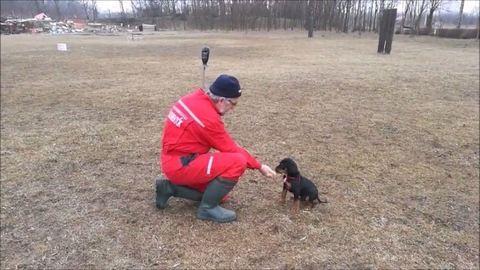 Tüneményes a speciális mentők legújabb önkéntese – videó