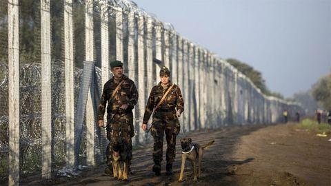 Újabb kerítés épül a szerb-magyar határon